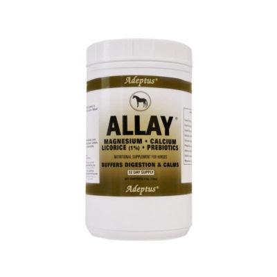 Allay-32-web