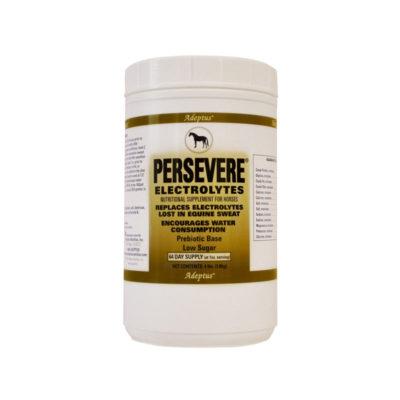 Persevere-64-web